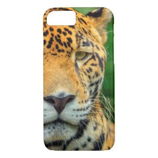 Close-up of a jaguar face, Belize iPhone 7 Case