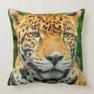 Close-up of a jaguar face, Belize Throw Pillow