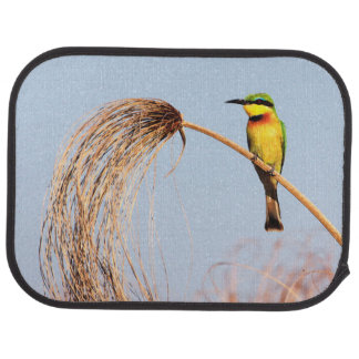 Close-up of a little bee-eater bird car mat