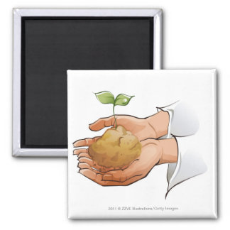 Close-up of a person's hands holding seedling magnet
