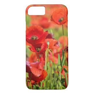 Close-up of a Poppy field, France iPhone 8/7 Case