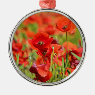 Close-up of a Poppy field, France Silver-Colored Round Ornament