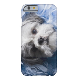 Close-up of a puppy covered with feathers barely there iPhone 6 case