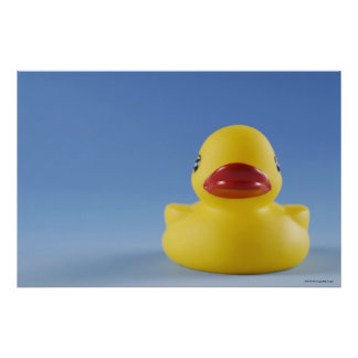 Close-up of a rubber duck poster