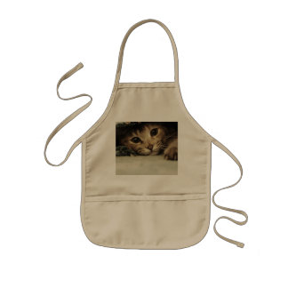 Close up of a tabby cats eyes kids apron
