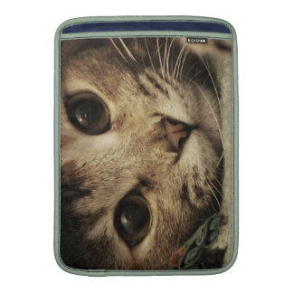 Close up of a tabby cats eyes MacBook sleeves