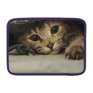 Close up of a tabby cats eyes sleeve for MacBook air