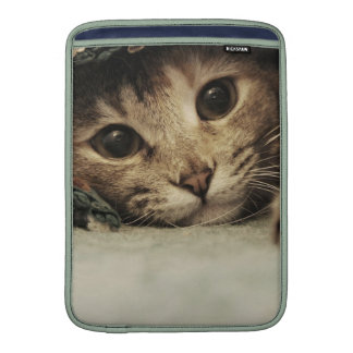 Close up of a tabby cats eyes sleeves for MacBook air