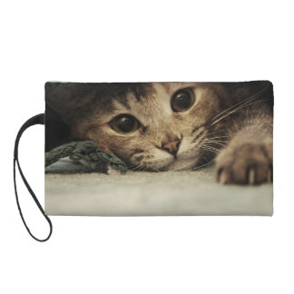 Close up of a tabby cats eyes wristlet purse