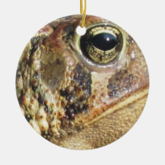 Close Up Of a Toad Round Ceramic Ornament