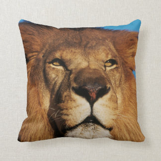 Close-up of African Lion Throw Pillow
