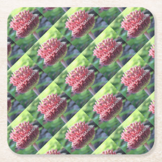 Close Up of An Ornamental Onion or Drumstick Alliu Square Paper Coaster