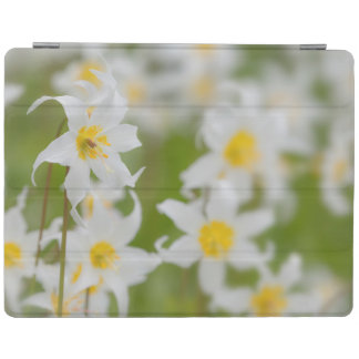 Close-up of avalanche lilies iPad cover