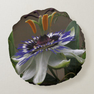 Close Up of Beautiful Passiflora Flower Round Pillow