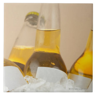 Close-up of beer bottles in ice tiles