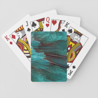 Close up of blue wing feathers playing cards