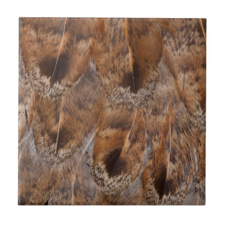 Close Up Of Brown Feathers Tile