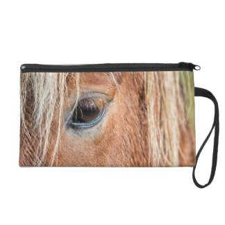 Close-up of eye and head of Icelandic horse Wristlet