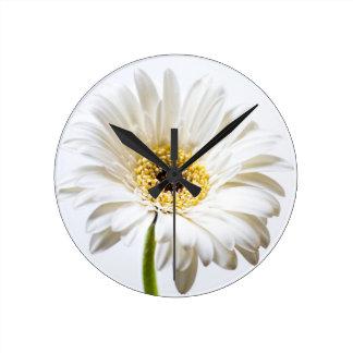 Close up of Gerbera flower head Round Clock