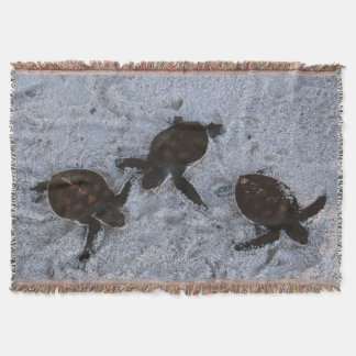 Close-Up of green sea turtle hatchings 2 Throw Blanket