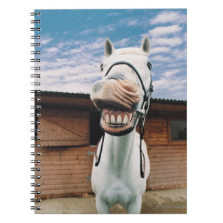 Close-up of Horse with Mouth Open Spiral Notebook