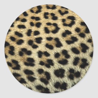 Close up of Leopard spots, Africa Round Sticker