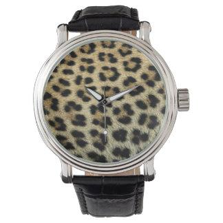 Close up of Leopard spots, Africa Watch