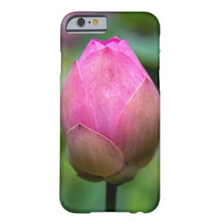 Close-up of lotus flower bud, Bali Barely There iPhone 6 Case