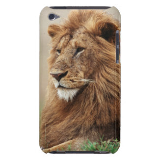 Close-up of male Lion iPod Case-Mate Case