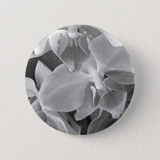 Close up of orchid blossoms in gray scale 2 inch round button