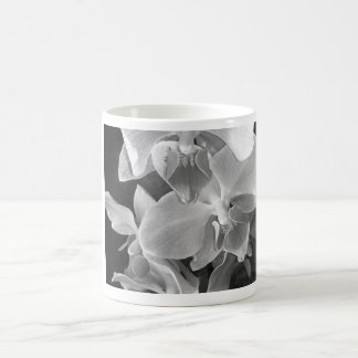 Close up of orchid blossoms in gray scale coffee mug