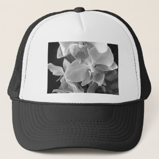 Close up of orchid blossoms in gray scale trucker hat