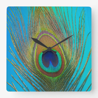 Close up of peacock feather square wall clock