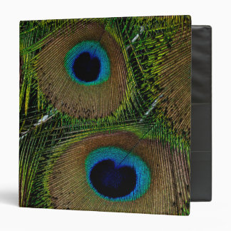 Close-up of peacock feathers vinyl binder