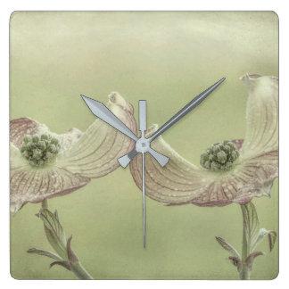 Close-up of Pink Dogwood Blossoms | Seabeck, WA Square Wall Clock