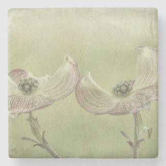 Close-up of Pink Dogwood Blossoms | Seabeck, WA Stone Coaster