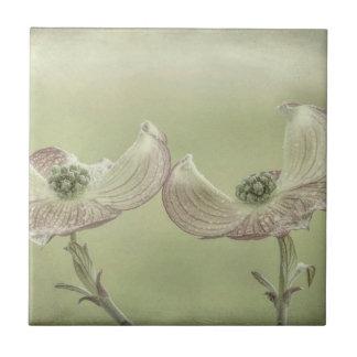 Close-up of Pink Dogwood Blossoms | Seabeck, WA Tile