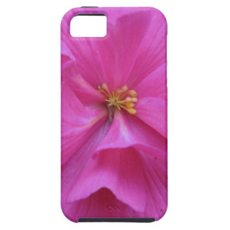 Close up of Pink Flower iPhone 5 Cases