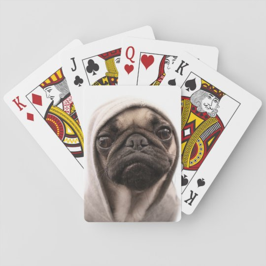 Close up of pug wearing hoodie. playing cards