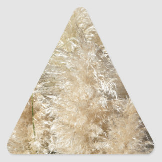 Close-Up of Tall Pampas Grass Plumes Triangle Sticker