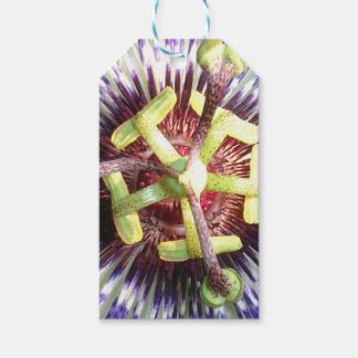 Close Up of The Centre Of a Passiflora Flower Pack Of Gift Tags
