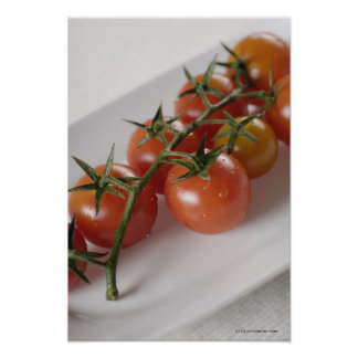 Close-up of tomatoes on a tray poster