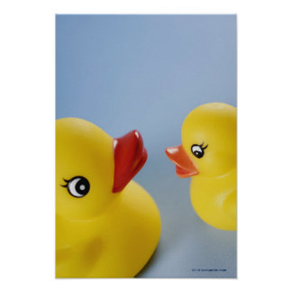 Close-up of two rubber ducks poster