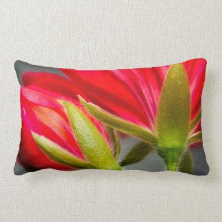 Close-up of vining geranium from back of flower lumbar pillow