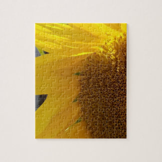 Close Up of Yellow Sunflower Jigsaw Puzzle