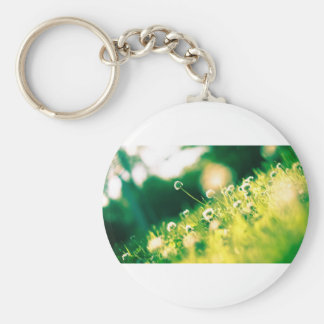 Close Up Photo of Dandelion Keychain