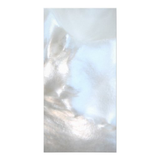 Close up Photo. Picture of a Seashell. Photo Card Template