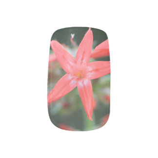 Close Up Pretty Red Wildflower Minx Nail Art