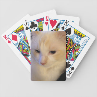 Close Up Red Point Ragdoll Cat Bicycle Playing Cards