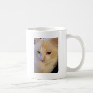 Close Up Red Point Ragdoll Cat Coffee Mug